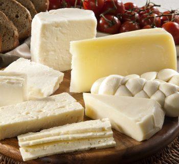 Os benefícios do queijo na sua saúde